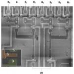 מדעני מכון ויצמן למדע יצרו ננו-חוטים שמתארגנים בעצמם, ובנו מהם טרנזיסטורים ומעגלים לוגיים
